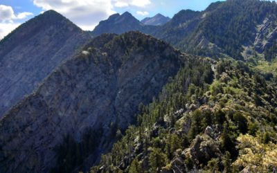 The Lost Gold Mine of Ferguson Canyon